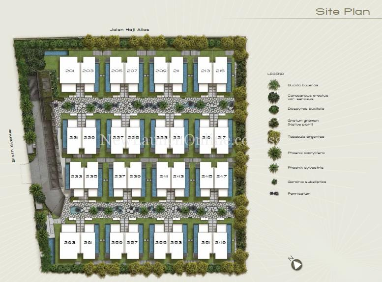 Palms at Sixth Avenue Site Plan