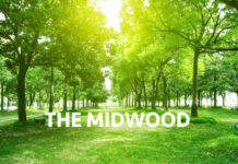 The-Midwood-Condominium