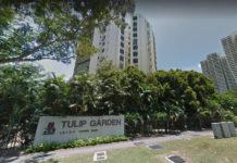 Tulip-Garden-En-Bloc
